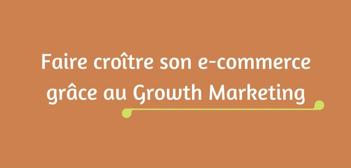 Faire croître son e-commerce grâce au Growth Marketing